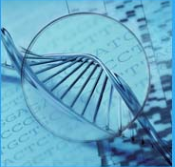 DNA - coded information