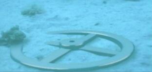 submerged chariot wheel